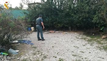 Investigan a un hombre por un delito de maltrato animal