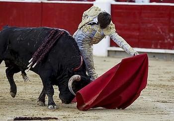 José Fernando Molina cortó una importante oreja en Dax