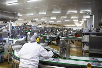 El peso del empleo en la industria burgalesa es del 20,7%, el porcentaje más alto tras Palencia (21,6%).