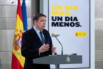 Planas estima que España precisa de cientos de temporeros