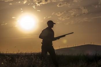 Anulan la sentencia del TSJ sobre el decreto de caza de 2015