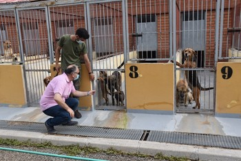 El Albergue Provincial de Animales registra 100 adopciones