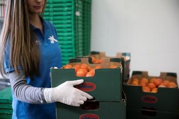 La Caixa recauda 162.842 euros para los Bancos de Alimentos