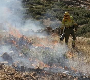 Los fuegos bajan pero hay más superficie forestal afectada