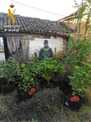 La Guardia Civil desmantela dos plantaciones de marihuana