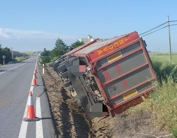 'Chotos' escapados tras un accidente en Cantimpalos (fotos)