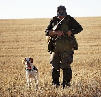 El mundo de la caza celebra la decisión del Supremo