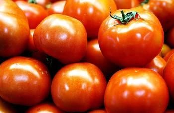 La Unión Europea importa más tomate marroquí que español