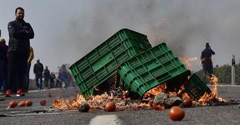El sector hortofrutícola de Almería protesta por su situació
