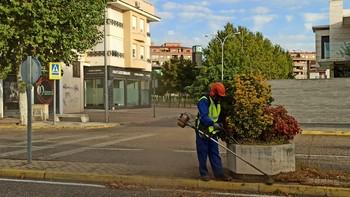 Medio Ambiente inicia la limpieza de todas las medianas