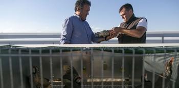 Sergio Jorge y su padre recogen huevos de perdiz en su granja. En primer plano, jaulas con aves.