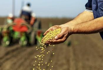 El reto de alimentar a 46 millones de personas