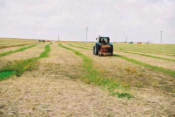 Más de 6.000 agricultores y ganaderos pedirán las ayudas PAC