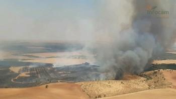 Las hectáreas quemadas en la región cae drásticamente