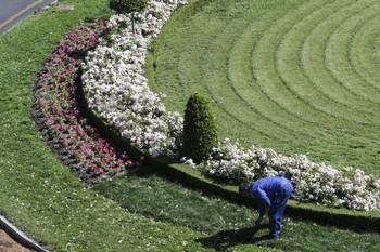 Licitado el contrato de parques y jardines por 6,7 milllones