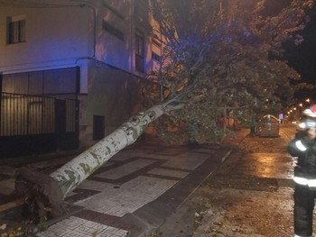 El viento obliga a intervenir a los bomberos de Soria