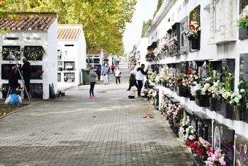 279 nichos y 30 columbarios más para el cementerio