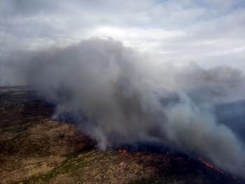 La campaña de incendios deja 4.378,6 hectáreas calcinadas