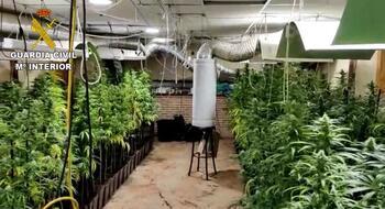 Aire acondicionado las 24 horas, clave para pillar marihuana