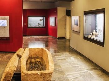 'La Oca Medieval' acaparará la mirada en el museo capitalino