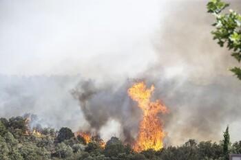 Extinguido el incendio forestal en Villarrubia de Santiago