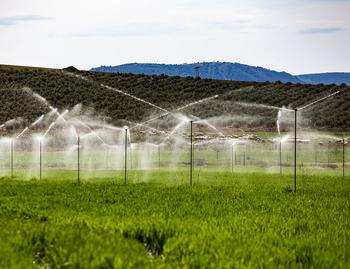 Cuatro millones para dos proyectos de modernización de riego