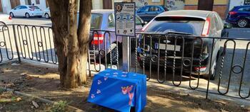 Nuevos comederos para colonias felinas en Talavera