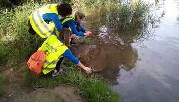 40 voluntarios limpian el Ebro frente a los microplásticos