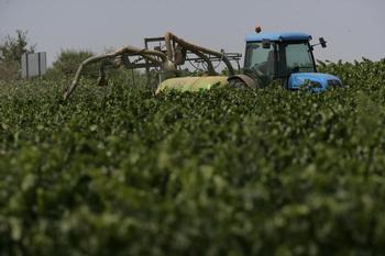 La cátedra Agrobank premia ahorrar químicos en viticultura
