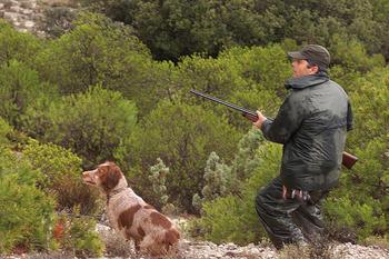 La temporada de caza comienza con fuerza