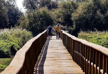 La caída del turismo provoca graves pérdidas en el sector
