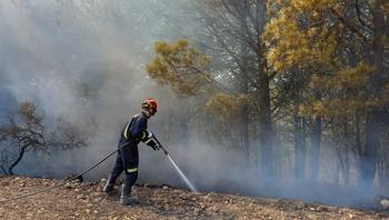 Los parques comarcales de bomberos intervienen en 177 fuegos