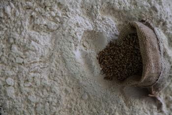 Metidos en harina