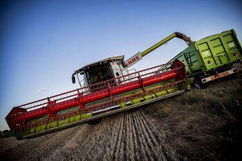 La cosecha de cereal baja un 25% y parte con