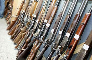 La Guardia Civil destruyó 428 armas de fuego el año pasado