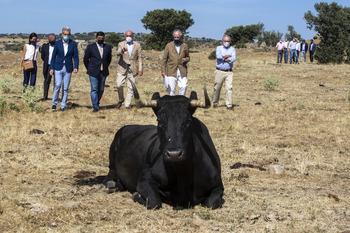 """Carnero destaca a la Comunidad como la """"granja de España"""""""
