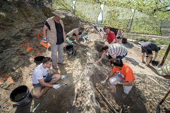Aparecen los restos de tres dinosaurios en Igea