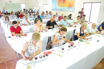 Tomelloso convoca concursos de cata de brandy, vino y aceite