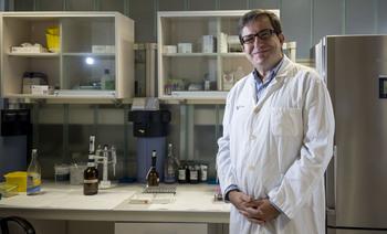 Tomás González preside el Grupo de Trombocitopenia Inmune