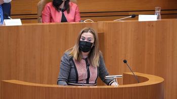 La viceportavoz del Grupo Parlamentario Socialista, Virginia Barcones.