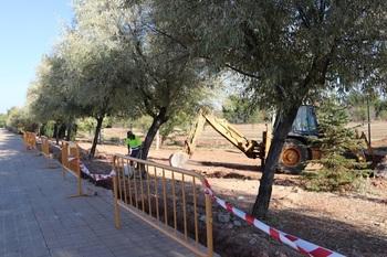 Comienzan las obras del nuevo parque canino de Manzanares