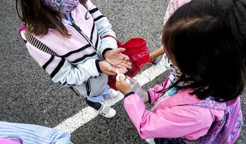 Infantil y Primaria pierden casi 600 alumnos en un curso
