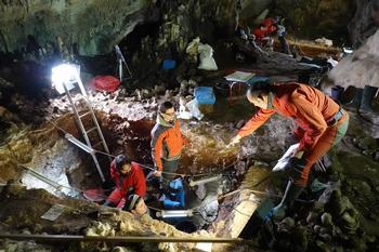 Recuperan ADN nuclear de varios neandertales en Atapuerca