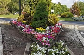 Plantación de flores a las puertas del verano