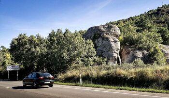Hay un elefante junto a la carretera