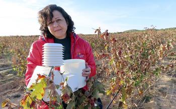 «El vino se hace desde la viña»