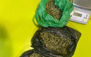 Detienen a un conductor que tenía varias bolsa de marihuana