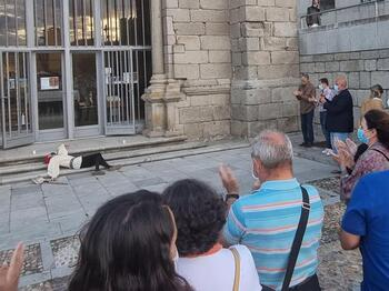 La ruta guiada 'Ávila misteriosa'  echa a andar