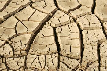 El CSIC desarrolla un sistema para monitorizar la sequía