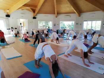 Yoga, meditación y alimentación, en un encuentro del Cites